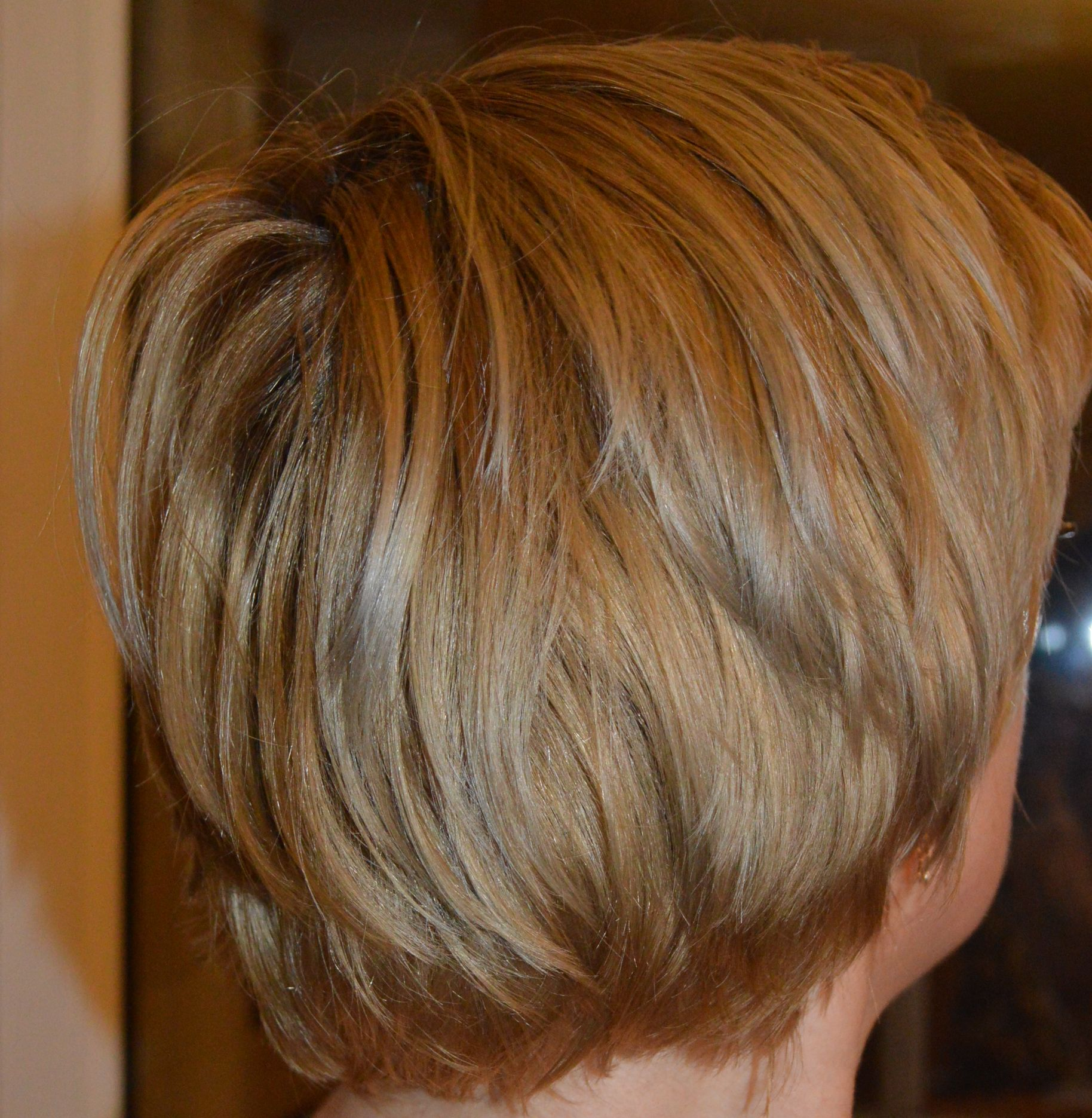 Review Garnier Olia 831 Golden Ashy Blond Diana Rosu